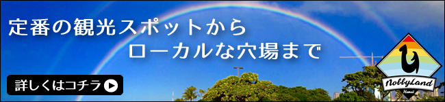NobbyLand Hawaii がお届けするおすすめツアー
