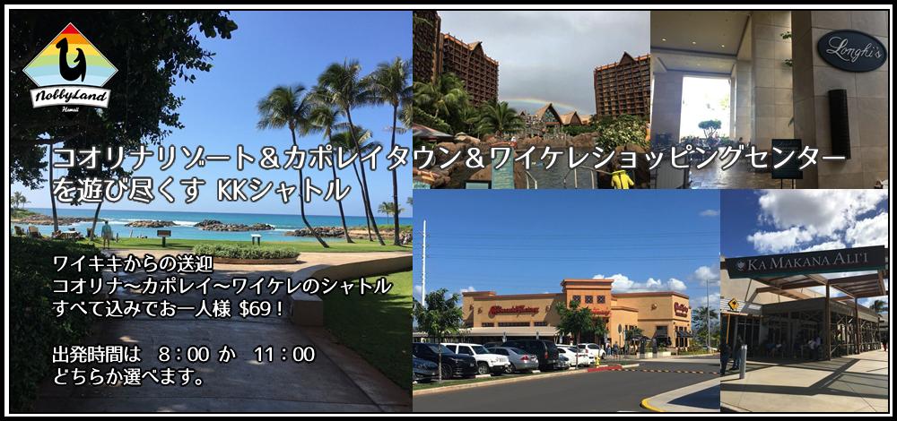 About Nobbyland Hawaii