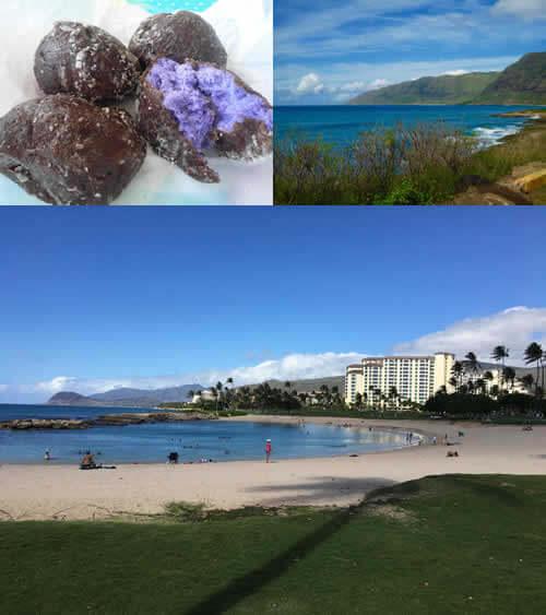 オアフ島 最後の秘境&最新のリゾート ウエストコーストツアーの写真